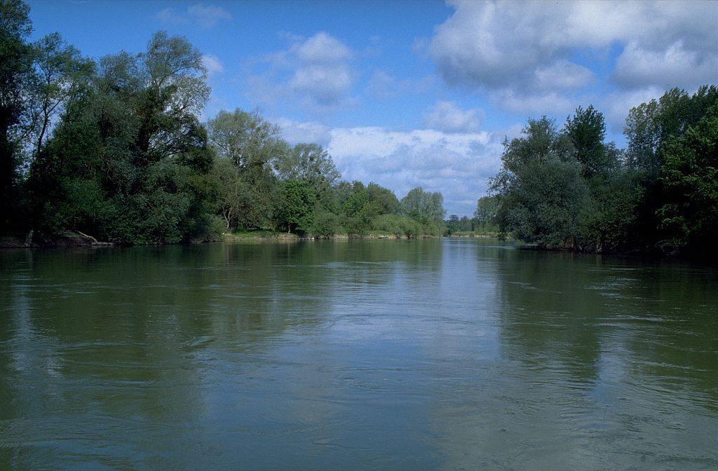 Restaurer la continuité écologique de l'axe Seine : une équipe pluridisciplinaire à l'œuvre